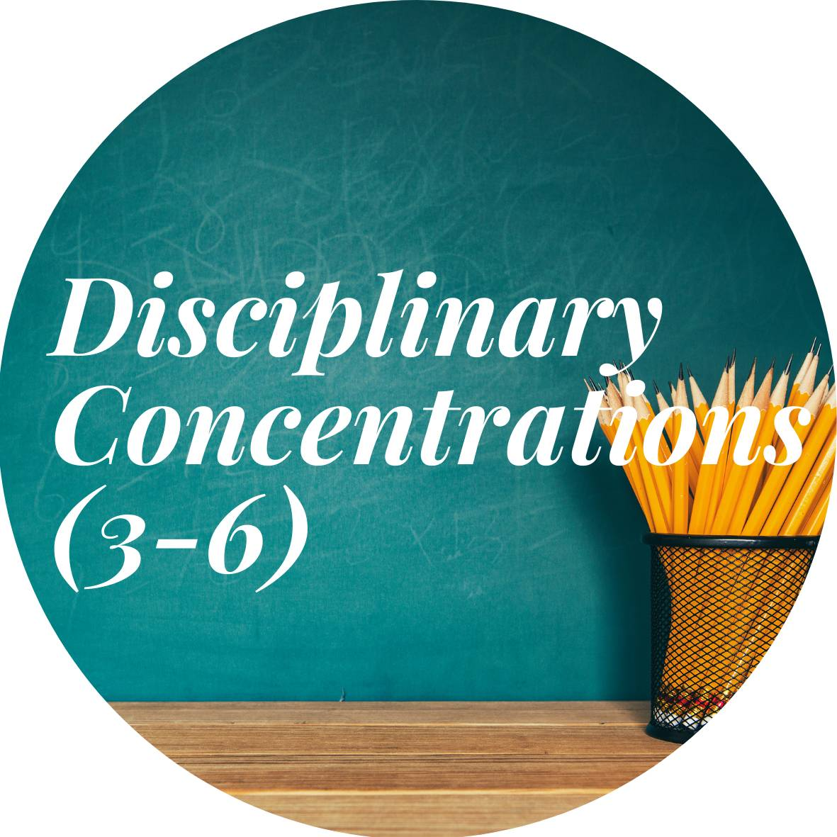 Disciplinary Concentrations (3-6)